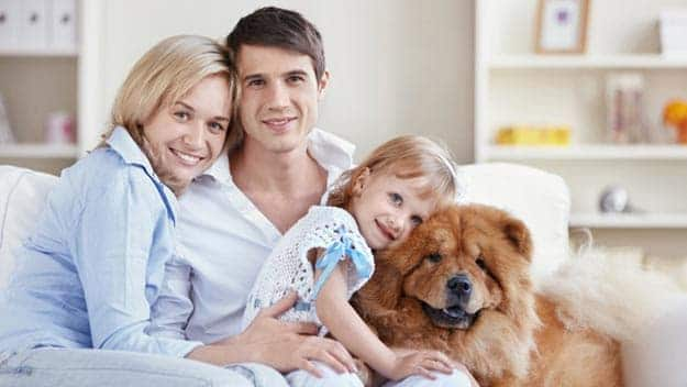 Wills & Trusts dog-young-family Direct Wills West Yorkshire